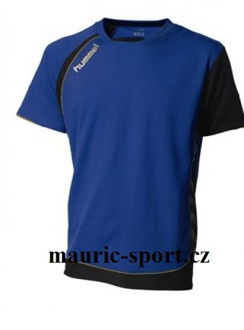 Hummel dres do haly 10 ks TECHNICAL GOLD 03-407-7079